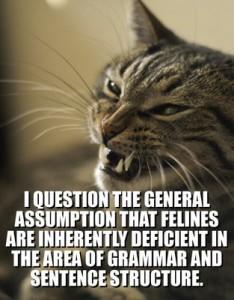 grammarcat