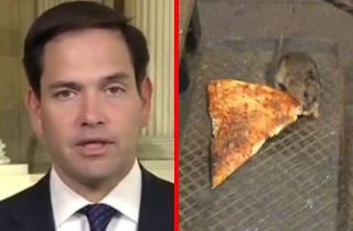 marco rubio steels pizza place wi-fi