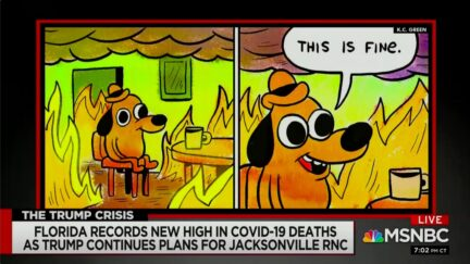 Chris Hayes Deploys 'This is Fine' Meme to Mock GOP Convention Plans for Jacksonville