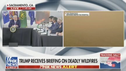 trump CA wildfires