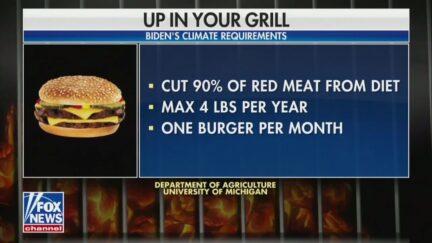 Fox News Burger Correction