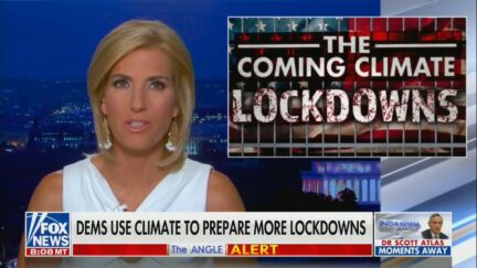 Laura Ingraham hosts The Ingraham Angle on Fox News.