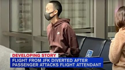 American Airlines passenger arrested for fight on plane